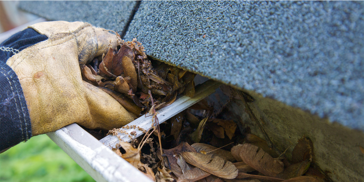Tips and Tricks for Gutter maintenance